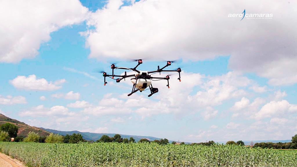 drones-plantando-sementes-de-árvores-portada
