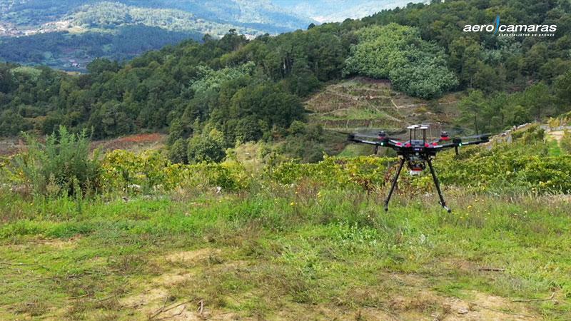 drones plantando sementes de árvores3